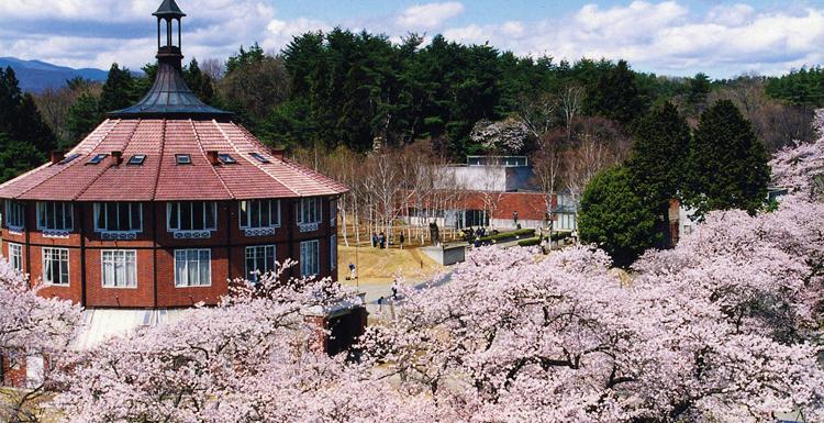 「清春白樺美術館 桜」の画像検索結果