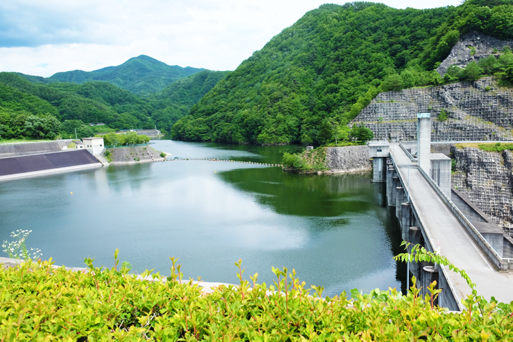 ダム の 役割