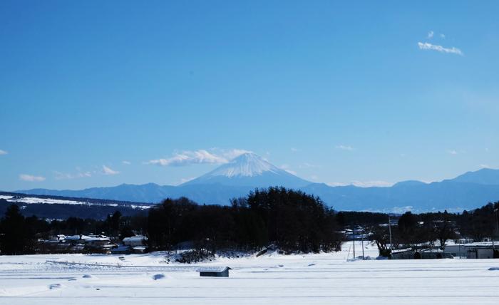 snow_160119-1