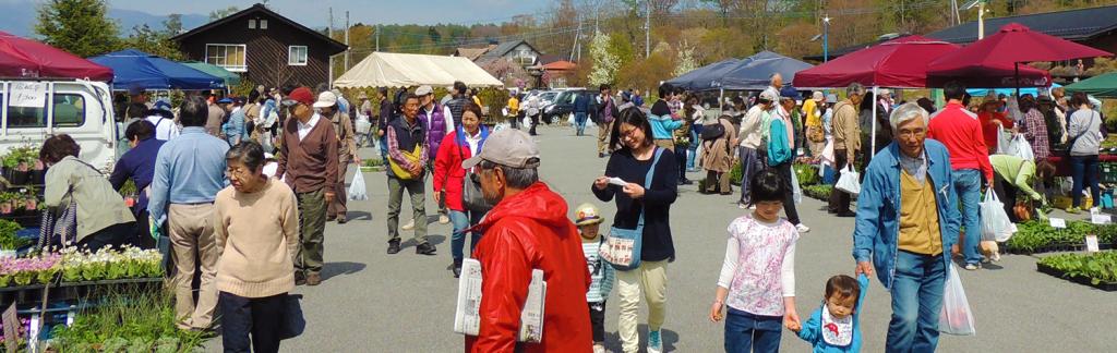 miniflowermarket