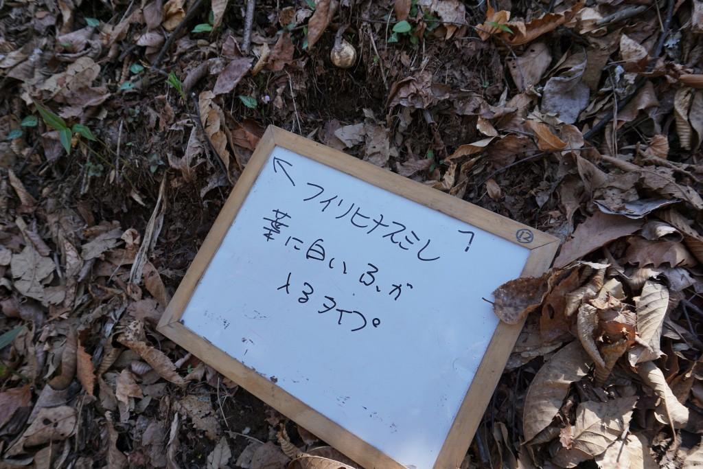 DSC00119 - ブログ