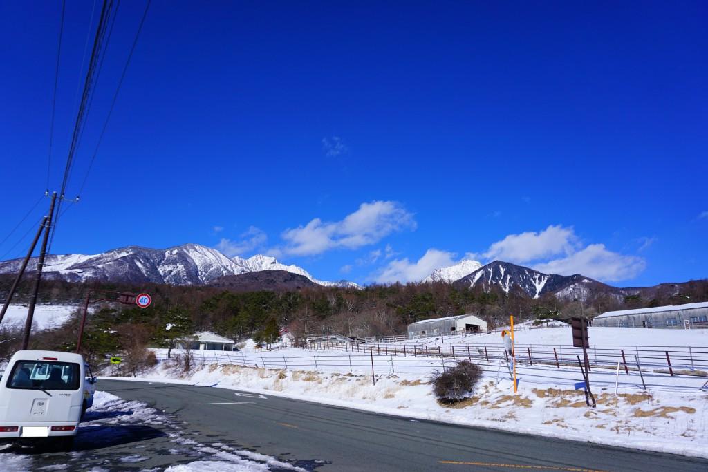 スキーシュー (5)