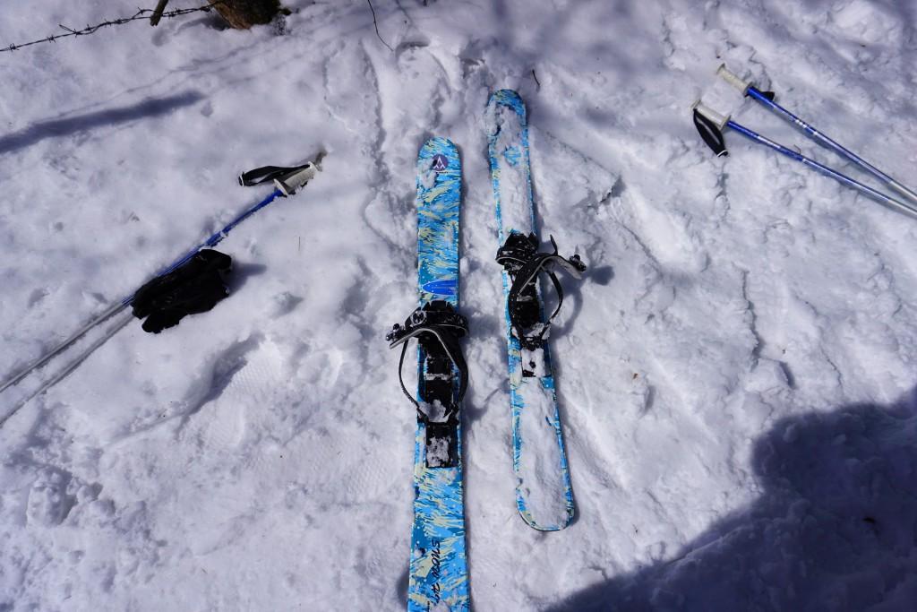 スキーシュー (8)