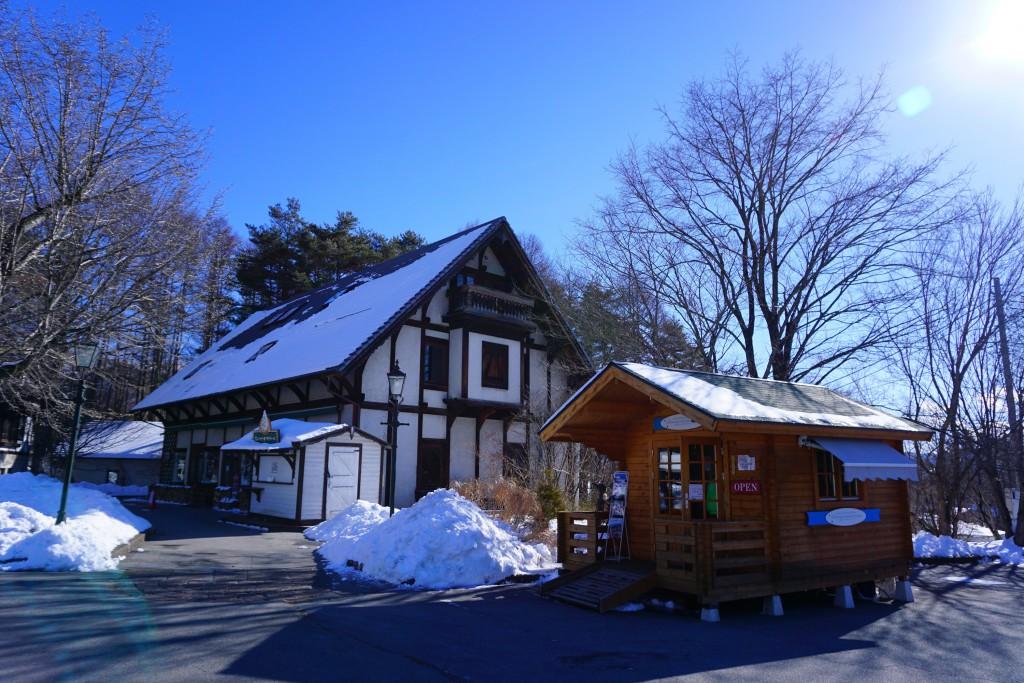 スキーシュー (2)