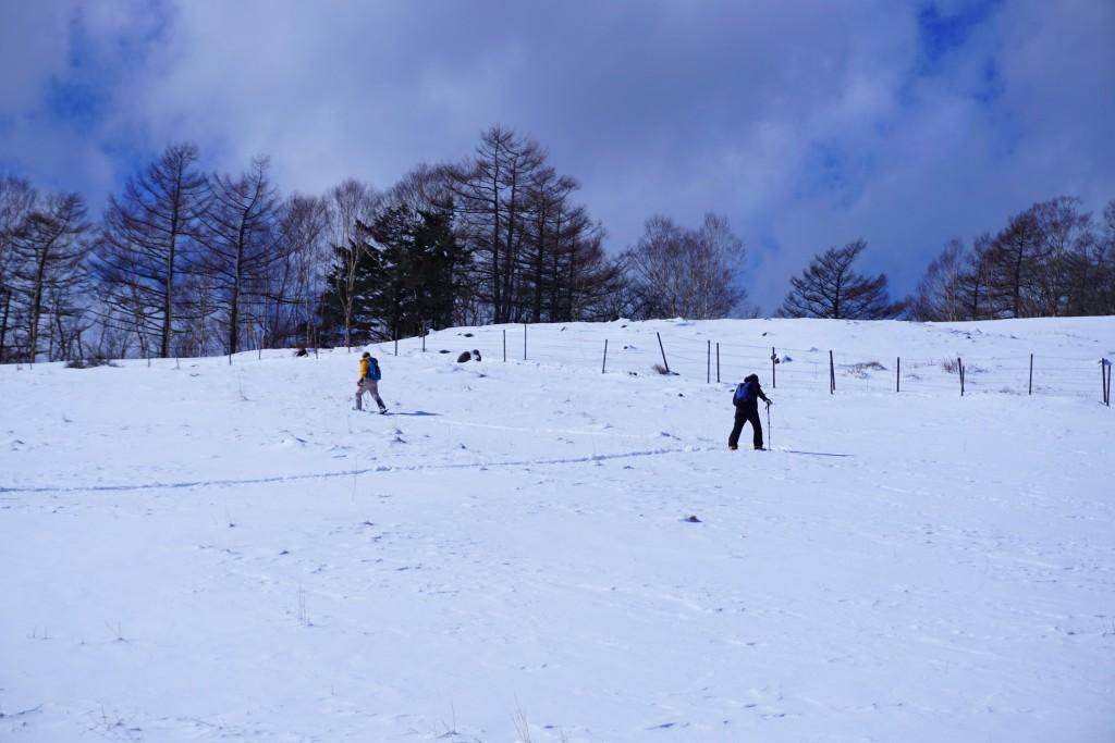 スキーシュー (19)