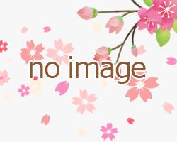 sakura_noimage_n