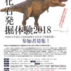 化石発掘体験2018