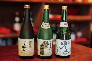 sake_hachimaki