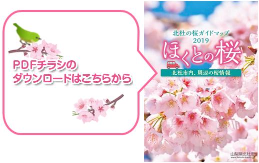 ほくとの桜2019ダウンロード