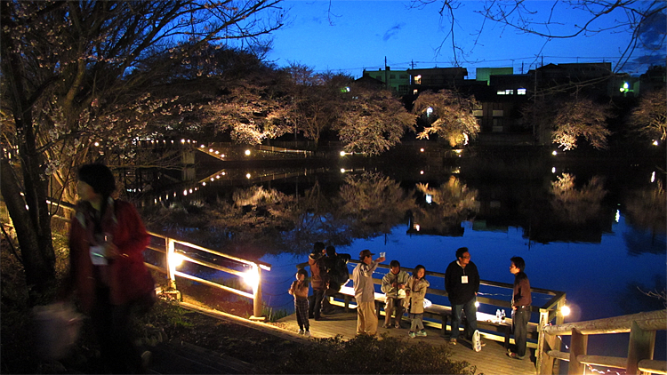 第10回北杜夜桜まつり